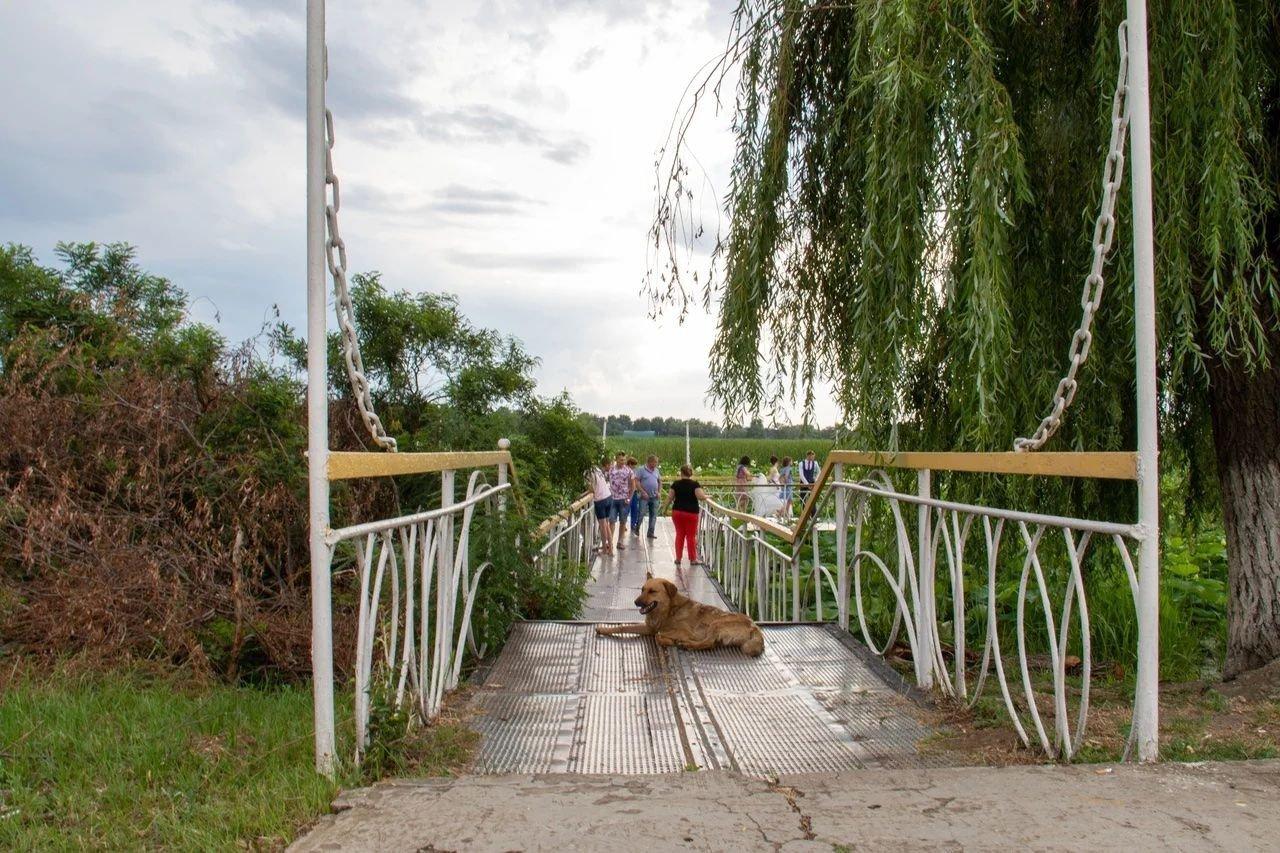 Мостки ведущие к площадке на Озере лотосов.