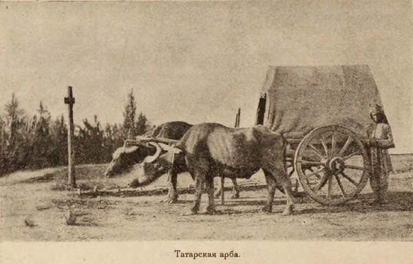 20-ci əsrin əvvəllərində Azərbaycanda Arba