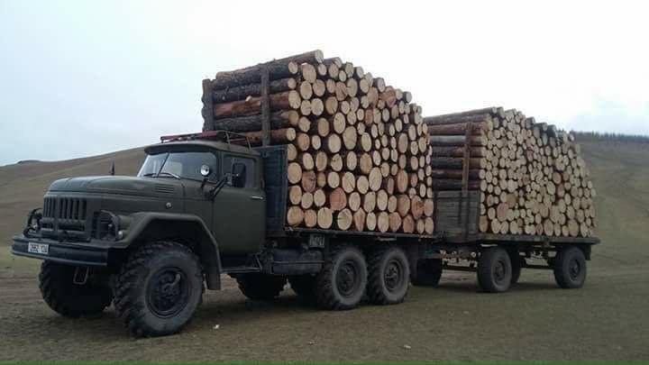 Как возят лес в Монголии